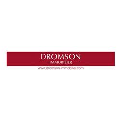 Dromson Immobilier logo