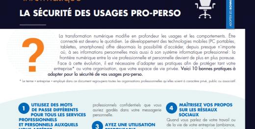 Preview de l'infographique sur la sécurisation des usages pro & perso